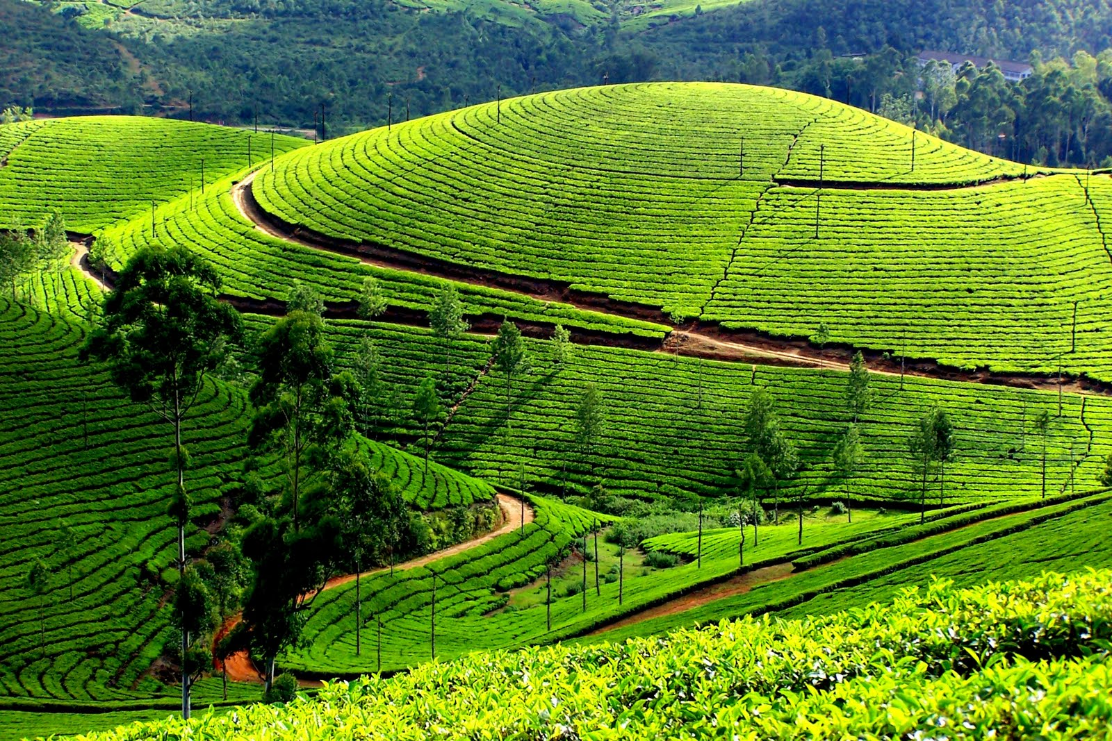 Top 10 Indian Destinations You Have In Your Bucket List