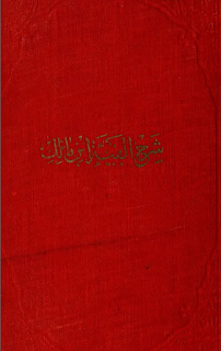 شرح ألفية ابن مالك لابن الناظم