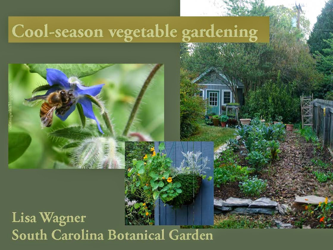 Cool-season vegetable gardening