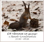 "СП ""Запасы на зиму"" с Леной-Lovecreative с 27.10"
