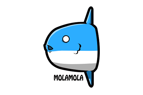 MOLAMOLA INC