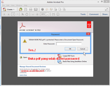 rik-mengunci-file-pdf