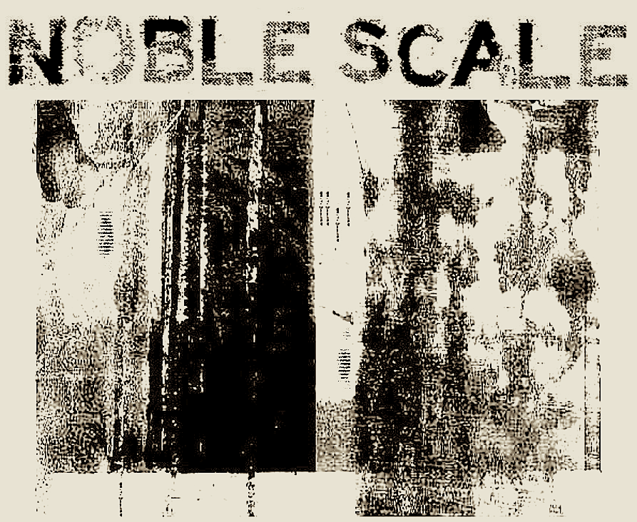 NOBLE SCALE