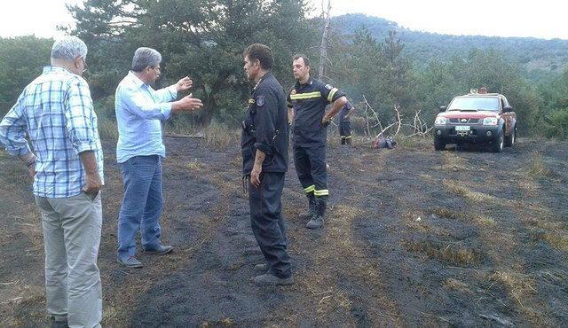 Έκκληση Παυλίδη στους πολίτες για προστασία των δασών από τις πυρκαγιές