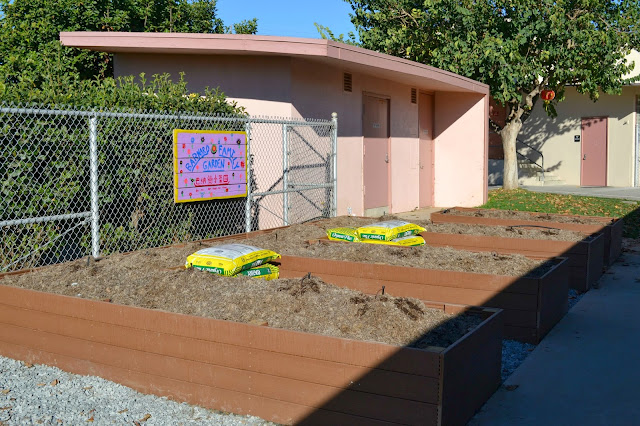 Mommy Testers, Terracycle, Capri Sun, Building an organic garden at a school #shop