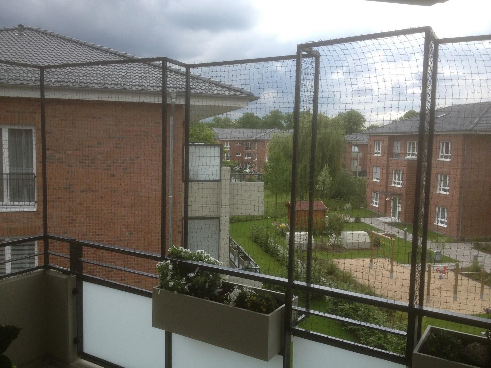 ... für ein Katzennetz: Katzennetz ohne bohren für Balkon in Leverkusen