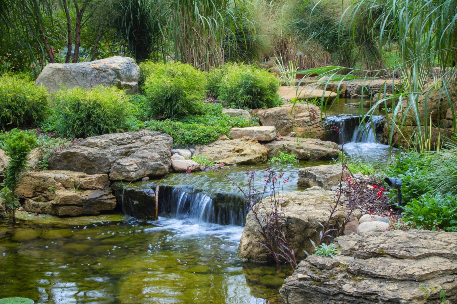 Aquascape your landscape how a chicago suburbanite for Pictures of backyard waterfalls
