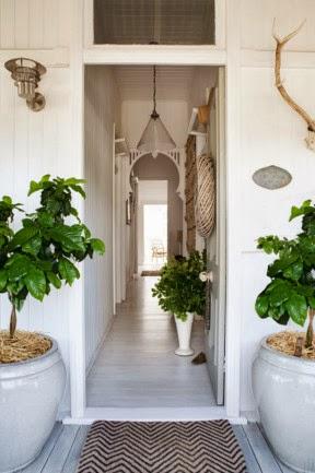 Decoración blanca con plantas verdes
