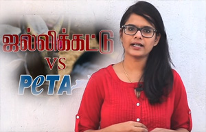 Jallikattu VS Peta Spl Video
