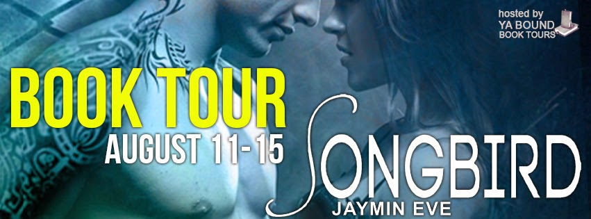 http://yaboundbooktours.blogspot.com/2014/07/tour-sign-up-songbird-sinclair-story-1.html