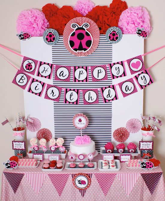 FunnyCheeks Blog Ladybug everything A theme birthday party idea