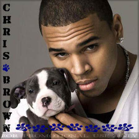 Download CD Chris Brown   Diamond
