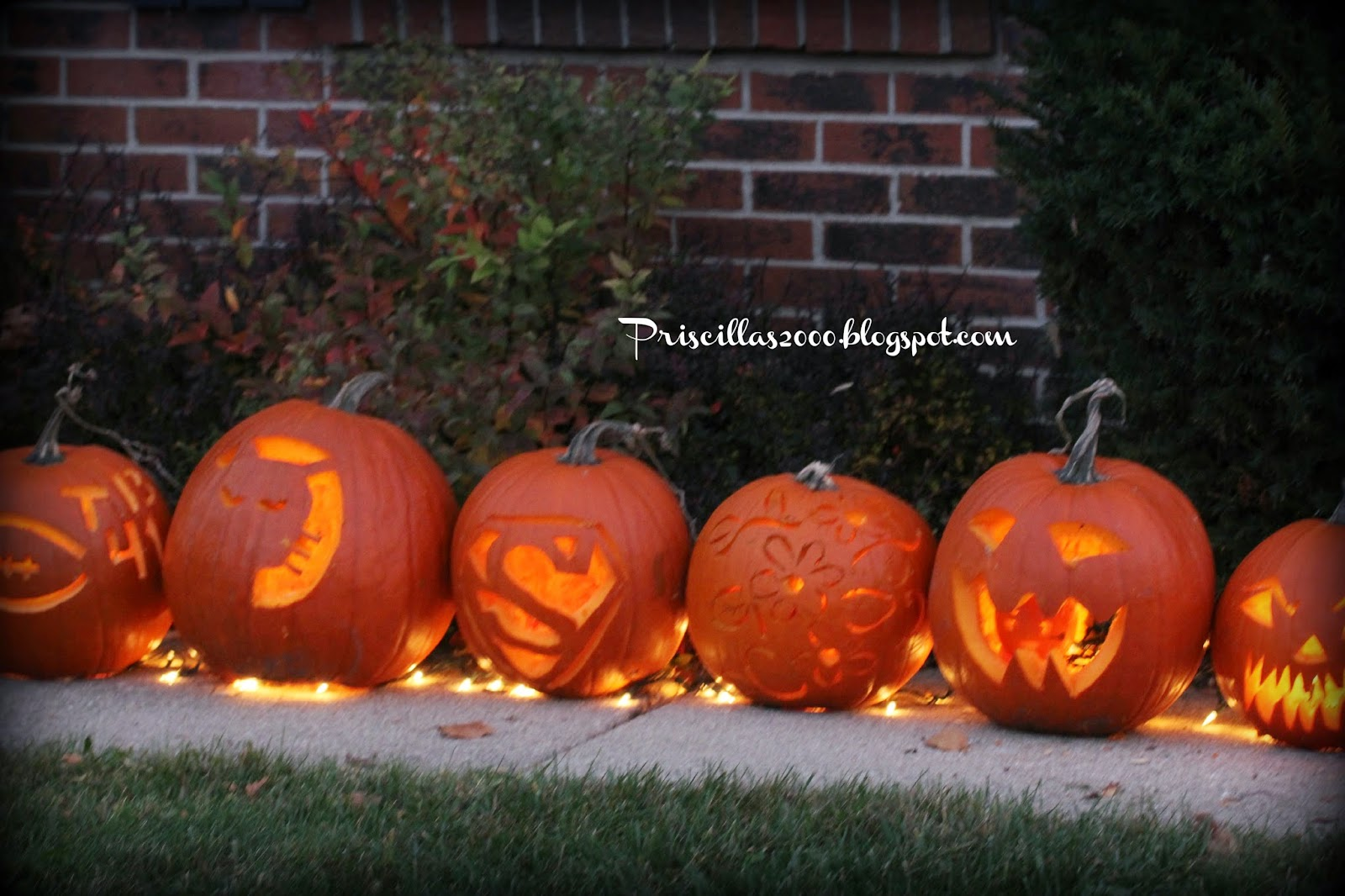 Priscillas Pumpkin Carving 2014