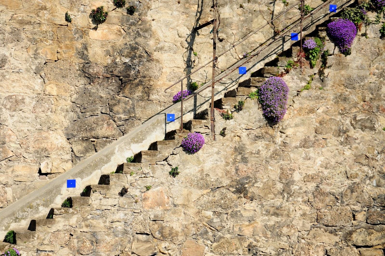 ruta terrazas Lavaux lausanne turismo
