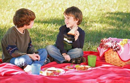 Que significa soñar con picnic