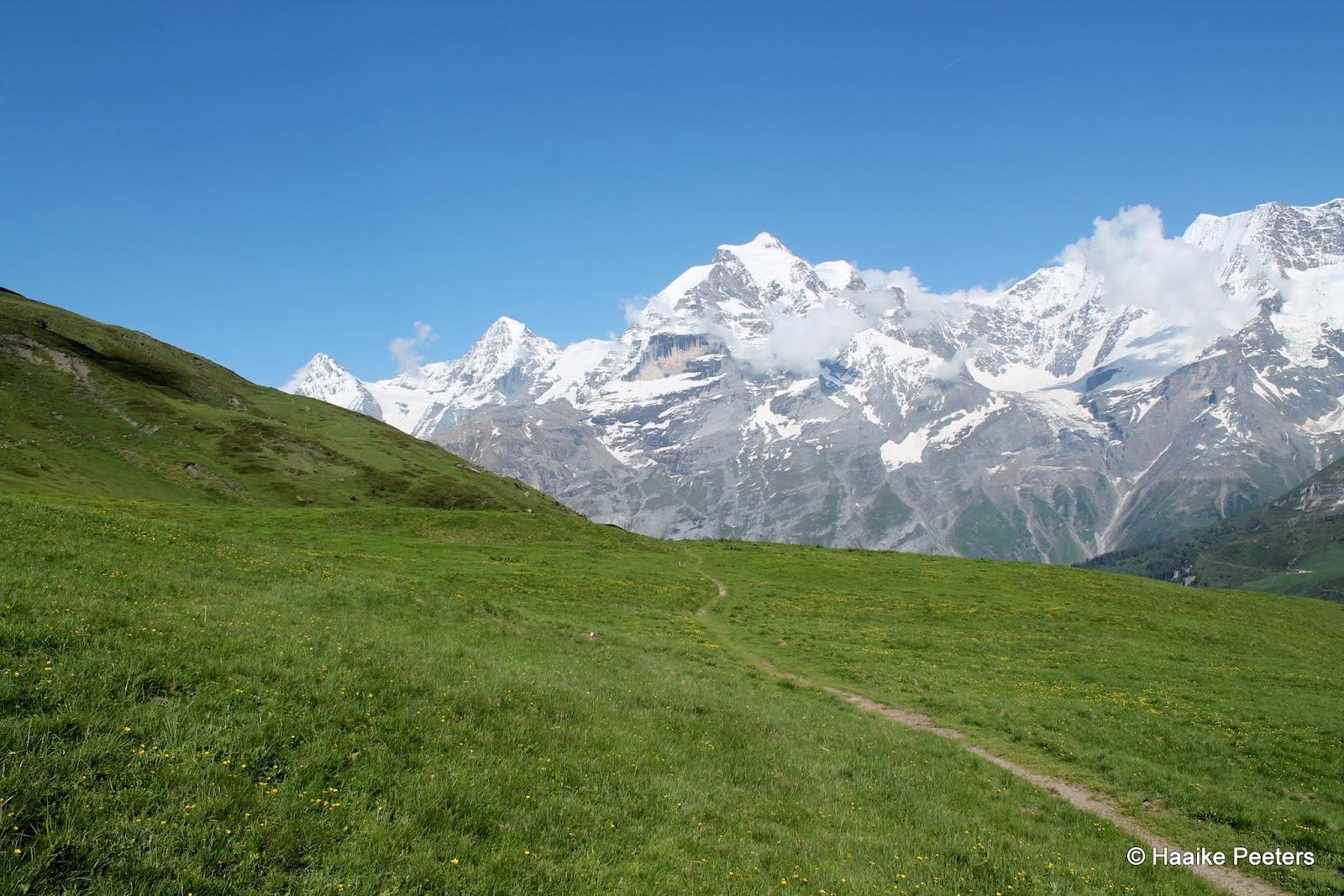 Eiger, Mönch & Jungfrau (Le petit requin)