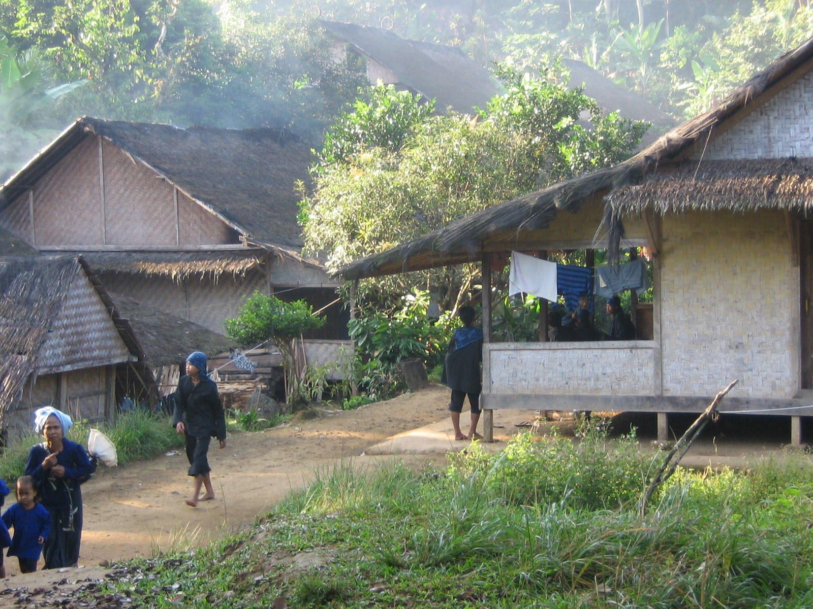 Download this Motif Atap Rumah Suku Baduy Dalam picture