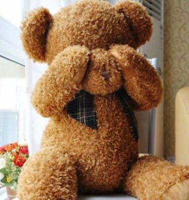 Boneka Teddy Bear Cokelat Menangis
