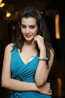 Diksha Panth New  Spicy Picture Shoot Stills015.jpg