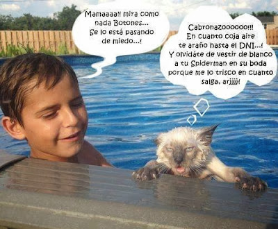 Imágenes Divertidas, Imágenes de Humor, Imágenes para Whatsapp