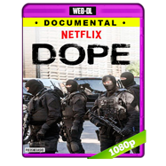 Dope (2017) Temporada 1 Completa WEB-DL 1080p Audio Dual Latino-Ingles