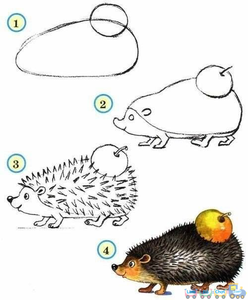 Hướng dẫn vẽ hình đơn giản - con nhím