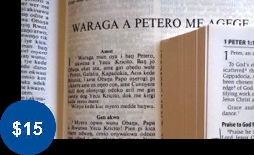 VERNACULAR BIBLES
