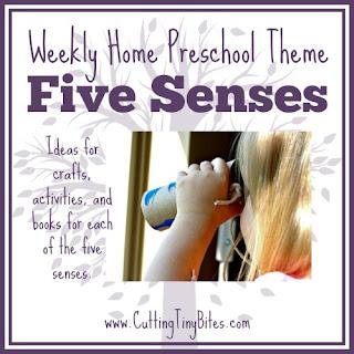Five Senses- Homeschool Preschool