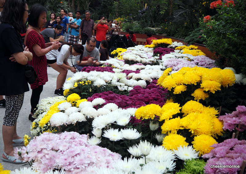 Garden By The Bay Flower Festival cheekiemonkies: singapore parenting & lifestyle blog: mid-autumn