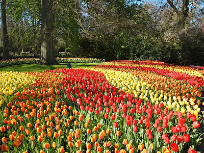Parque de flores Keukenhof