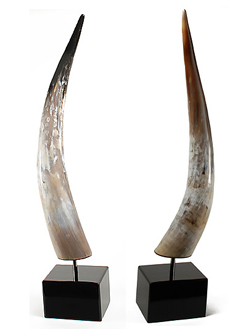Cool Bookends For The Bookshelf Themodernsybarite