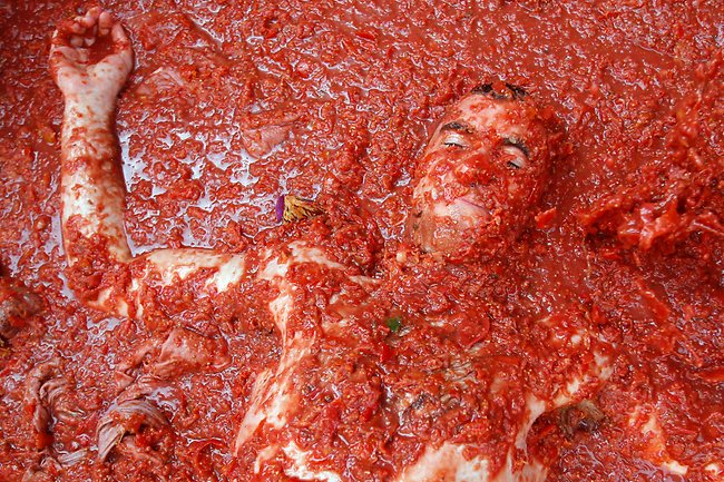 Tomatina Festival Pictures !
