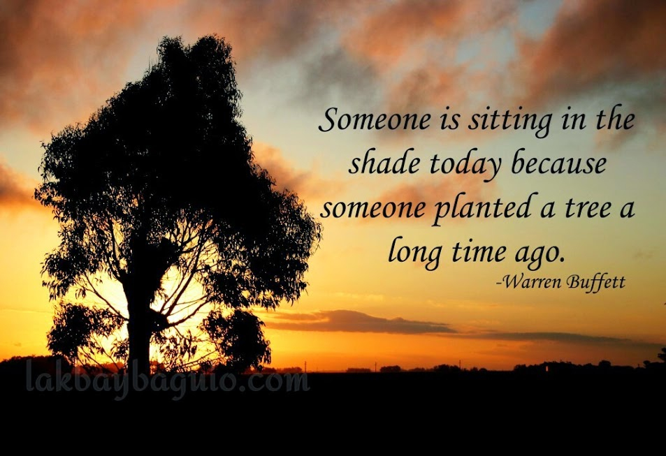 """Someone is sitting in the shade today because someone planted a tree a long time ago."" ~ Warren Buffett Picture of a tree in front of a setting sun."