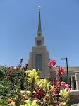 Safford Temple
