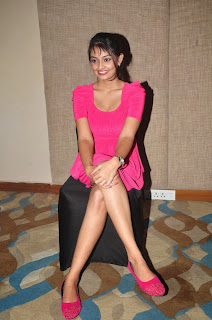 Nikitha Narayan in Cute Pink Tight Dress Spicy Pics