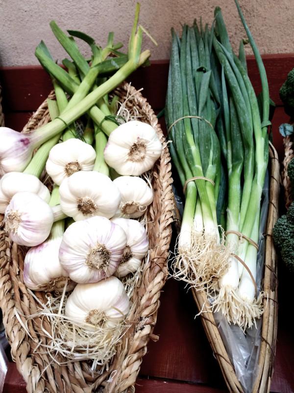vareborgs gårdsbutik, varberg, varbergs, grönsaker, jordgubbar, vareborgs jordgubbsplockning, plocka jordgubar, självplock,