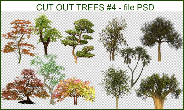 cut_out_trees_psd_#4