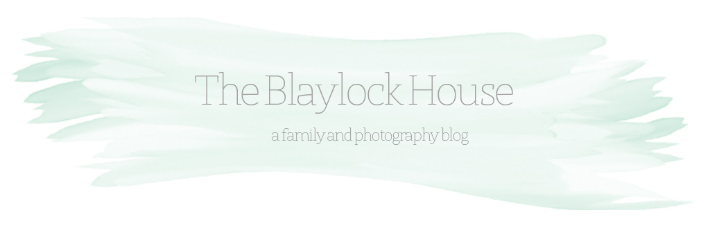 The Blaylock House