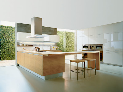 modern kitchen design -green walls -good lighting