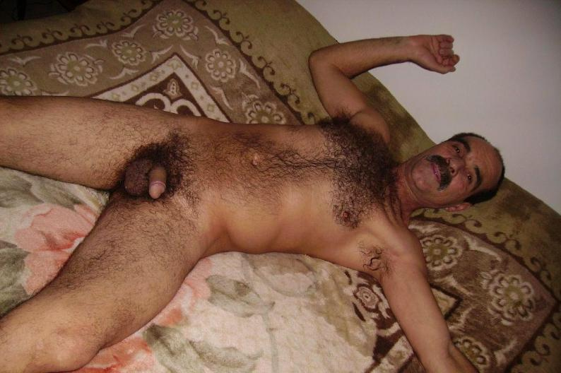 naked hairy chest - moustache daddies - gay daddies