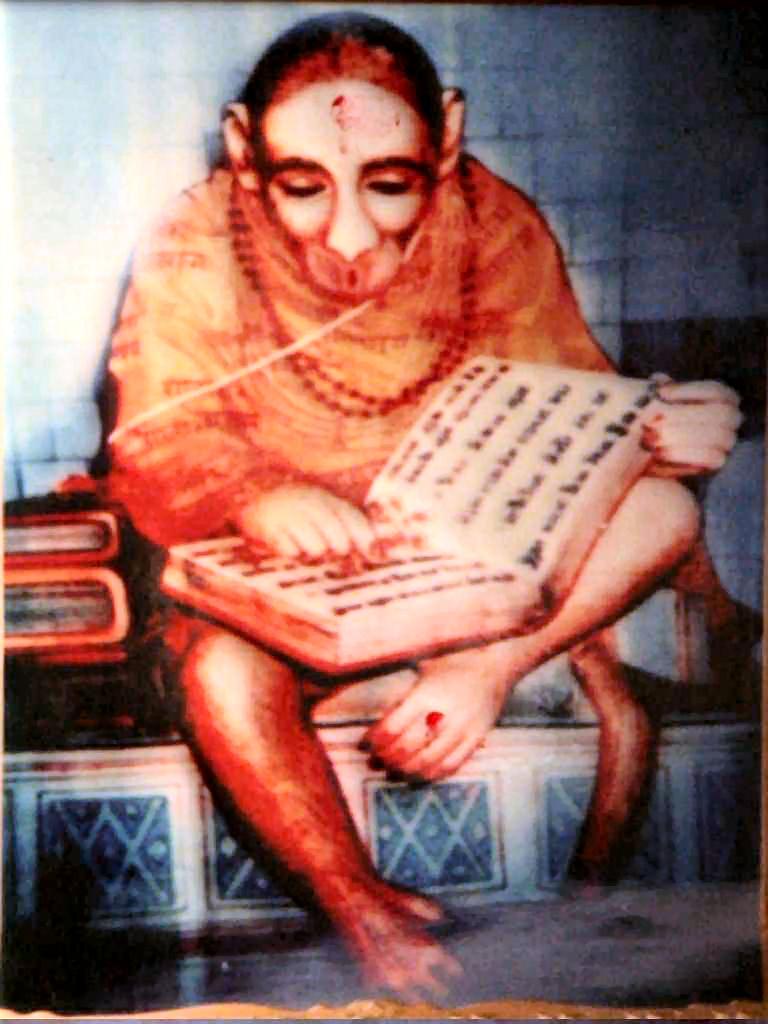 story of real and original hanuman photo from hiamalaya reading ramayana