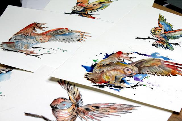 owl watercolors - sebastian orth