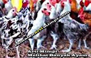 Arti Mimpi Melihat Banyak Ayam