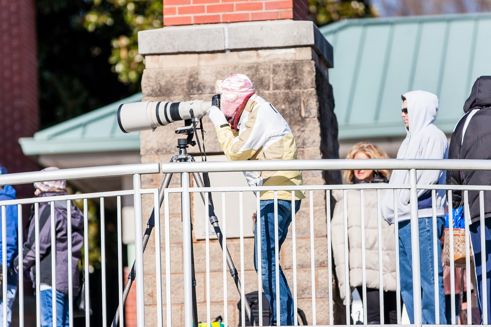 Lisa Mueller photographing with 600mm lens