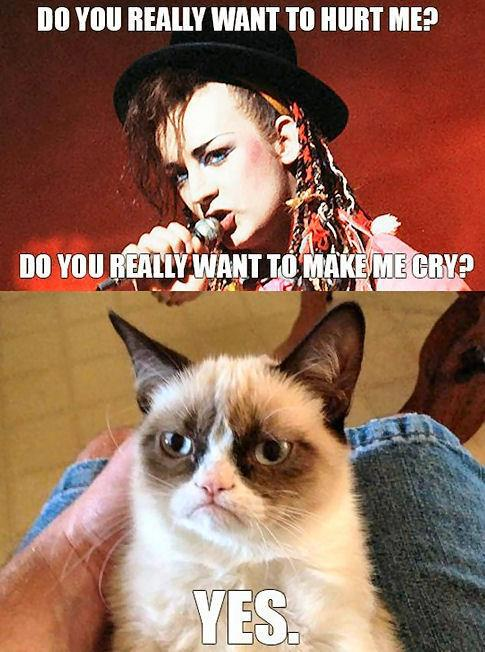 Angry Cat Meme Yes Grumpy cat meme - boy george Yes Really Meme