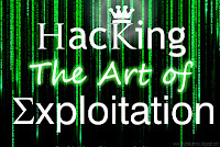 hacking wallpapers, wallpapers on hacking, hacking the art of exploitation