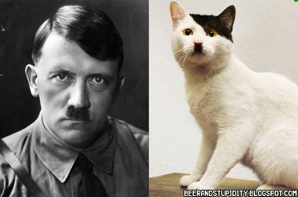 [Image: Celebrities-And-Their-Cat-Look-ALikes-02.jpg]