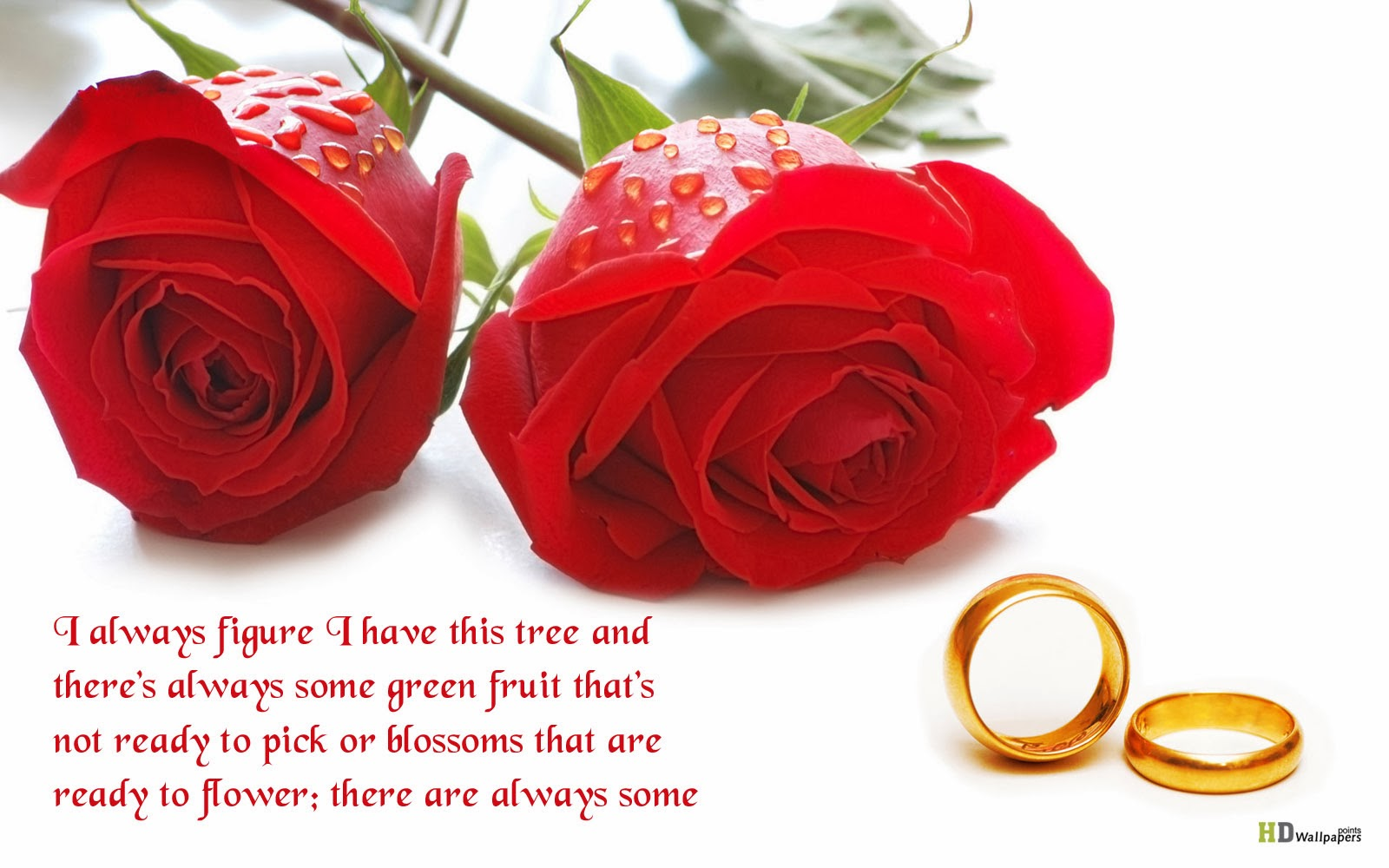 Love Quotes Flowers Wallpapers