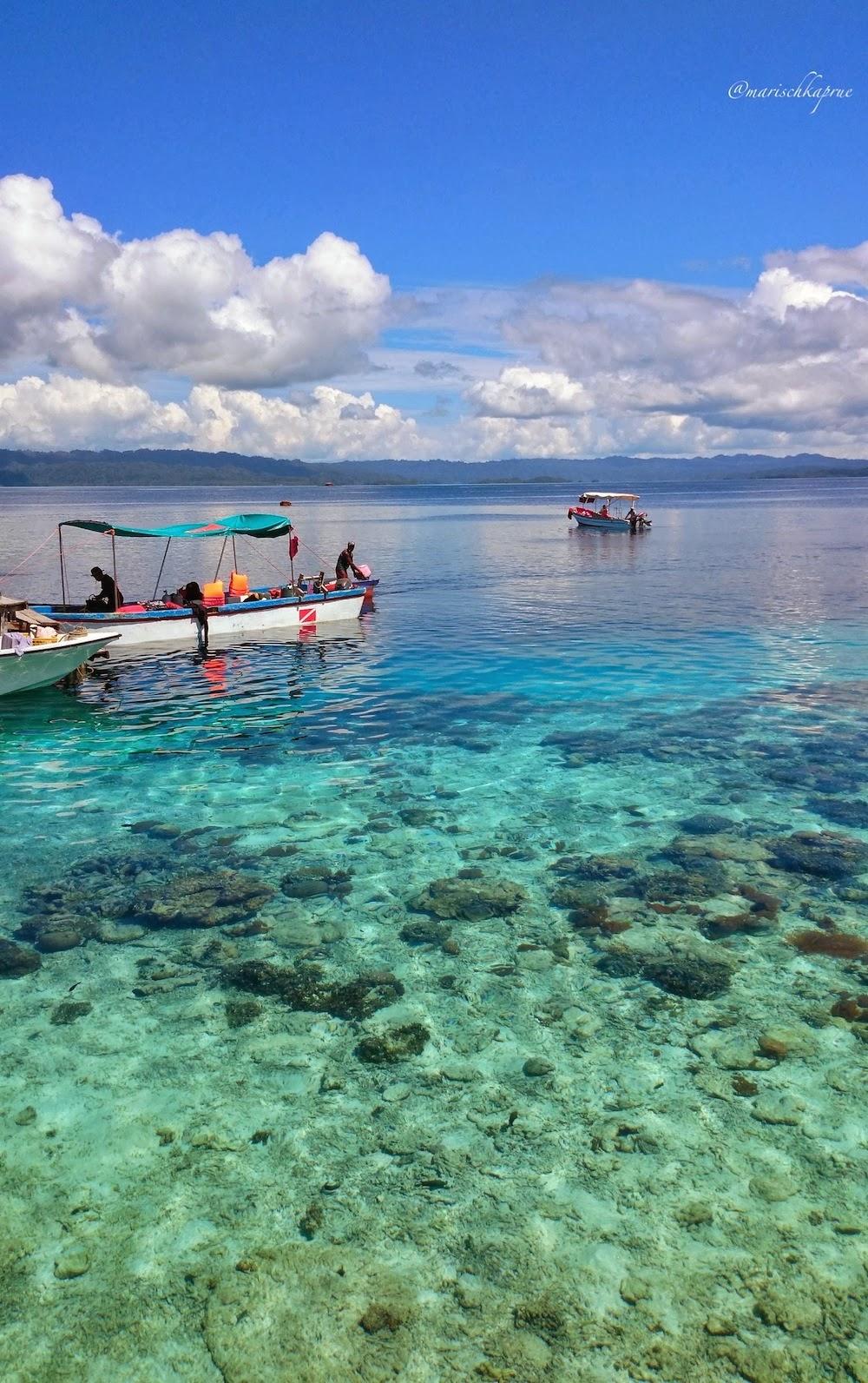 "<a href=""http://mataram.info/things-to-do-in-bali/visitindonesia-banda-marine-life-the-paradise-of-diving-topographic-point-inward-fundamental-maluku/"">Indonesia</a>best destinations : Terjebak Biru Di Arborek, Raja Ampat."