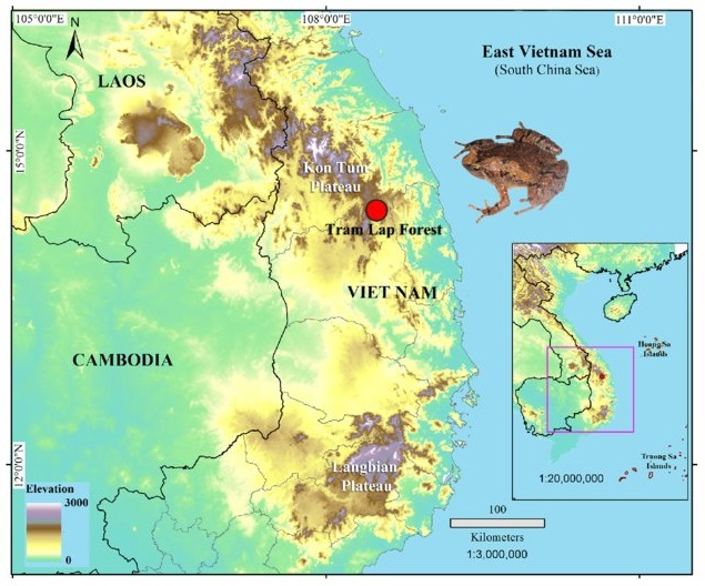 Type locality (red dot) of Microhyla aurantiventris sp. nov. in Gia Lai Province, Vietnam.